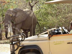 7 Days Magnificent Safari in Botswana and Zimbabwe