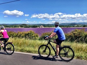 5 Days Provence Secrets Sightseeing and Cycling Tour in France