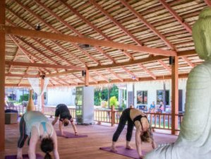 22 Days 200-Hour Yoga Teacher Training in Phuket, Thailand