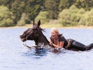 8 Days Advanced Horse Riding Holiday in La Salvetat sur Agout, France