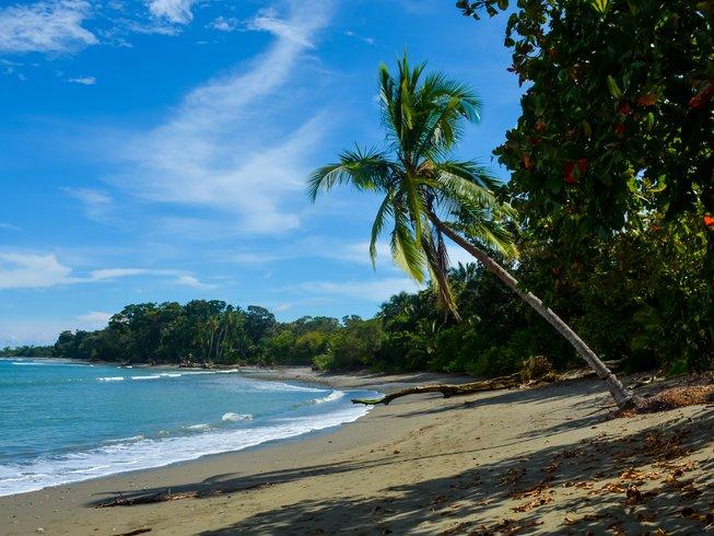 8 días retiro de yoga en Osa Península, Costa Rica