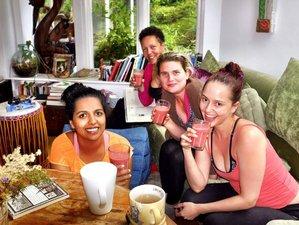 2 jours en retraite de yoga et detox dans le Sussex de l'Est, Grande-Bretagne
