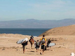 8 Day Surf Guiding in Taghazout, Souss-Massa