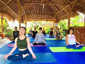 7 Day 'Celebrate Yourself' Inner Work, Self-love, Detox, Spa Bliss and Yoga Retreat in Tabanan
