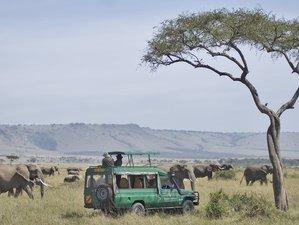 3 Days Masai Mara Kenya safari including an amazing Balloon Ride and champagne breakfast