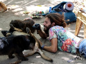 6 Day Creative Meditation Retreat with Healing Dogs in Camaçari, Bahia