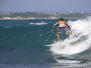 21 Days English Lessons and Surf Camp in California, USA
