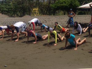9 Days Surf and Yoga Retreat in Costa Rica