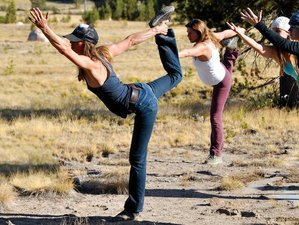 6 Days Walking Our Path Yoga Retreat in Yosemite, USA