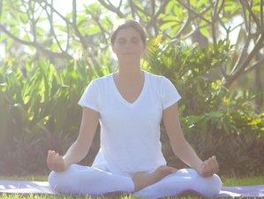 4 jours en stage de yoga vinyasa à Charroux, France