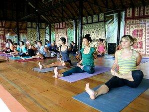 7 días retiro de yoga intensivo en Ko Phangan, Tailandia