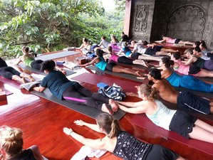 8-Daagse Energie en Intentie Yoga Retraite in Puntarenas, Costa Rica