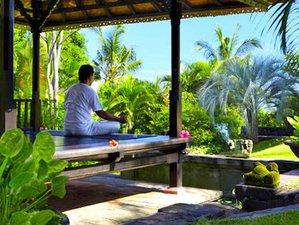 7 Day Body-Mind Detox, Self-love, Emotional Healing & Inner Peace Guided Meditation Retreat in Bali
