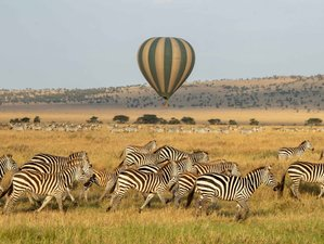 6 Days Tarangire, Lake Manyara, Serengeti, and Ngorongoro Crater Great Migration Safari in Tanzania