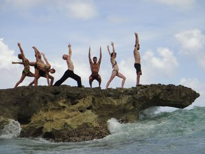 27 Day 200-Hours Yoga Teacher Training in Elba, Province of Livorno