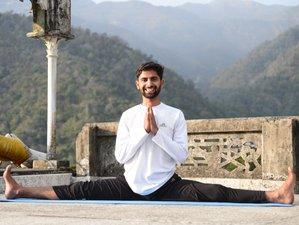 Self-Paced Online 200 Hour Online Hatha, Ashtanga Vinyasa With Bonus Yin Yoga