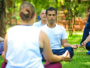 27 Days 300-Hour Ashtanga Yoga Teacher Training in Goa, India