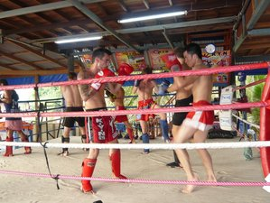 2 Weeks Muay Thai Camp in Thailand