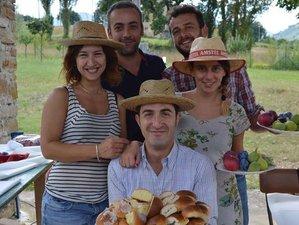 3 Days Verdicchio Harvest Culinary Holiday in Italy