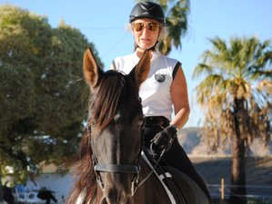 4 Days Body Awareness Horse Riding Training in Costa del Sol, Spain