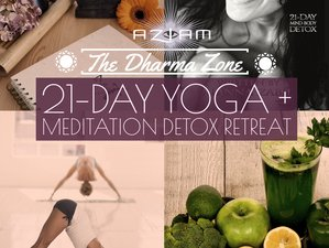 21 Day Dharma Zone Virtual Retreat for Mind and Body Detox