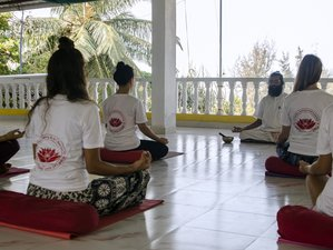 27 Days 200-Hour Yoga Teacher Training in Dharamsala