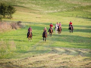 5 Days Point to Point Trail Riding Holiday in Transylvania, Romania