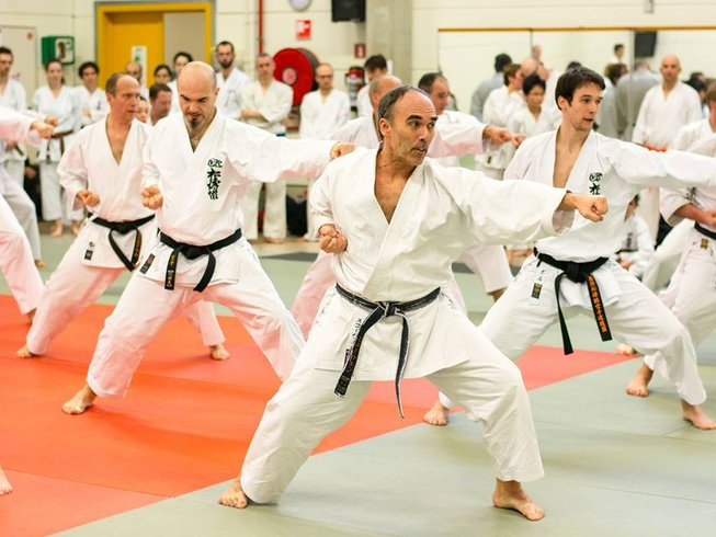 3 Days Karate Summer Camp in Belgium