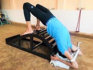 27 Day 800hr IAYT Accredited Yoga Therapy Teacher Training Course Level II in Rishikesh, Uttarakhand
