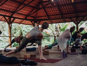 8 Day Costa Rica Meditation and Yoga Retreat for the Chakras in Puerto Viejo