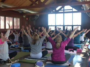 2 Days Spring Renewal Yoga Retreat New York