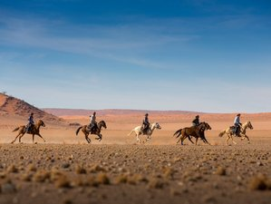 11 Days Wild Horses Riding Holiday and Safari in Namibia