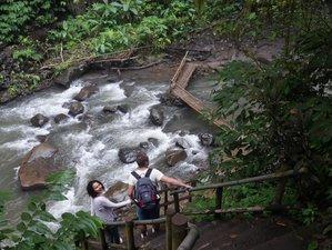 4 Day Cultural Yoga Retreat in Badung, Bali