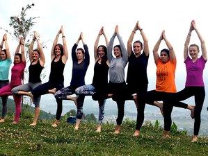 40 Day 500-Hour Special Advanced and Unique Yoga Teacher Training in Baia de Arieș