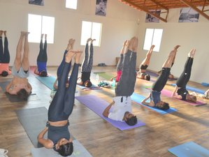 28 Days 250 Hours Hatha Yoga Teacher Training in India