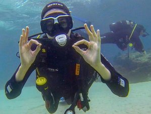 14 Day Non-Beginner Spanish Course and Diving Camp in Tarifa, Andalusia