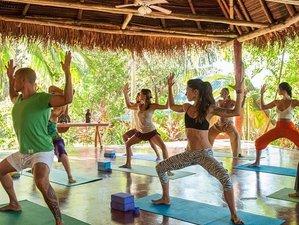 8 Day Awaken Costa Rica Healing Retreat with Yoga, Meditation, Reiki, and Chakra in Guanacaste
