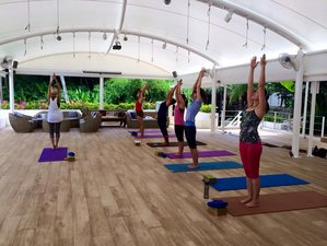 5 Days Juice Fast Detox and Yoga Retreats in Phuket, Thailand