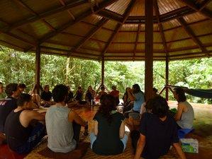 1 Week Traditional Ayahuasca Retreat in Morona Santiago with Shaman Arutam Ruymán
