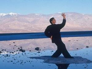 4 Days Flying Phoenix Qigong Training in Massachusetts, USA