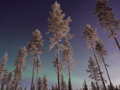 Tunturi Lapland