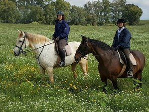 7 Day Heart of Andalusia Nature Ride: The Doñana Adventure Horse Riding Holiday in Seville