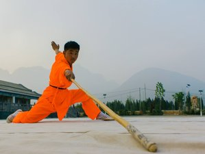 15 Days Traditional Shaolin Kung Fu Training in Denfeng, China