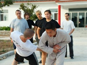 6 Months Shaolin Kungfu, Tai Chi & Wing chun Training at