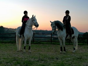 4 Days Three-Lesson Normal Dressage Horse Riding Holiday in Portugal