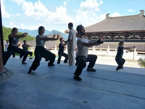 90 Day Shaolin Kung Fu, Wing Chun, Qigong, Tai Chi Training and Buddhist Cultivation at ErZu Temple