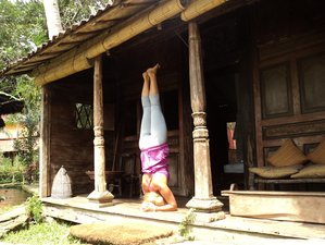8 Days Yoga Retreat in Bali, Indonesia