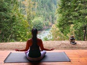 4 Days Let Your Soul Go Wild: Yoga Retreat in British Columbia, Canada