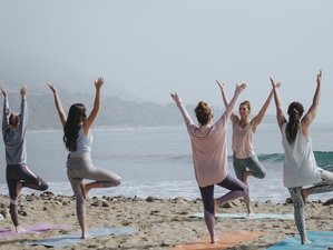 6 Day Celebrate Life with SUP and Yoga Retreat at Can Pastilla Beach Resort in Palma, Mallorca