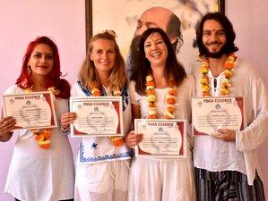 24 Day Experiential 200-Hour Hatha Yoga Teacher Training Plus 30-Hour Yoga Nidra Teacher Training